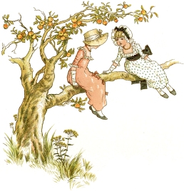 climbing tree 2